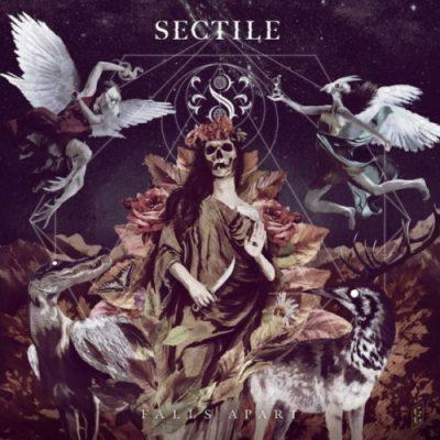 Sectile - Falls Apart (2020)