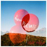 Color Motive - Elevate (2020)