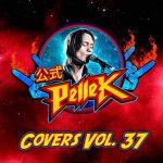 PelleK - Covers, Vol. 37 (2020) 320 kbps