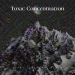 Toxic Concentration - Light, Shadows, Death (2020) 320 kbps