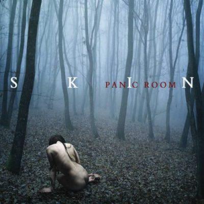 Panic Room - SКIN [Ехtеndеd Еditiоn] (2012) [2018]